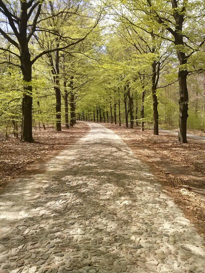 naast het fietspad lag meerdere keren een mooie stenenweg voor Bram